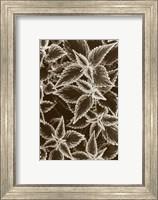 Garden Textures III Fine-Art Print