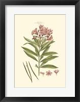 Small Blushing Pink Florals III (P) Fine-Art Print