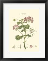 Small Blushing Pink Florals IV (P) Fine-Art Print