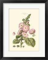 Small Blushing Pink Florals V (P) Fine-Art Print