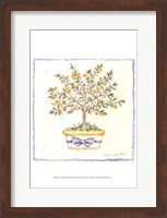 French Topiary I Fine-Art Print