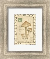 Mushrooms I Fine-Art Print