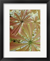 Woodland Plants in Red III Fine-Art Print