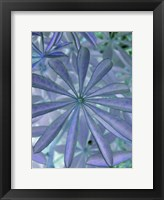 Woodland Plants in Blue I Fine-Art Print