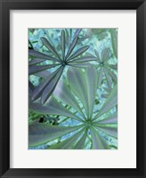 Woodland Plants in Blue III Fine-Art Print