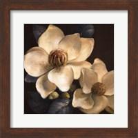 Blooming Magnolias II Fine-Art Print