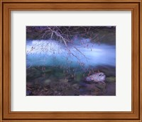 Early Spring Mt. Creek Fine-Art Print