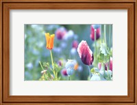 Poppy Design Fine-Art Print