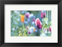Poppy Design Fine-Art Print
