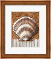 Vintage Shell III - mini Fine-Art Print