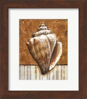 Vintage Shell II - mini Fine-Art Print