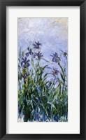 Purple Irises, 1914-17 Fine-Art Print