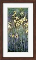 The Yellow Irises Fine-Art Print