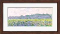 Field of Yellow Irises at Giverny, 1887 Fine-Art Print