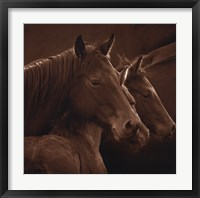 Tenderness Fine-Art Print