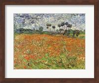 Field of Poppies Fine-Art Print