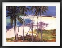Palm Shadows Fine-Art Print