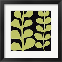 Green Fern on Black Fine-Art Print