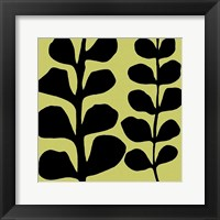 Black Fern on Green Fine-Art Print