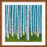Birch Grove Fine-Art Print