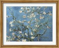 Almond Blossom, 1890 Fine-Art Print