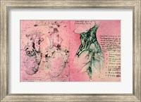 Anatomical drawing of hearts and blood vessels Fine-Art Print