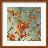 Orange Blossoms I Fine-Art Print