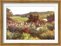 Vista II Fine-Art Print