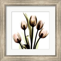 Crystal Flowers X-Ray, Tulip Bouquet Fine-Art Print