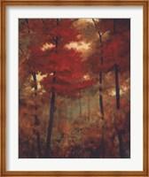 Autumn Woods Fine-Art Print