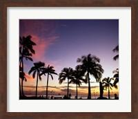 Silhouette of palm trees on the beach, Waikiki Beach, Honolulu, Oahu, Hawaii, USA Fine-Art Print