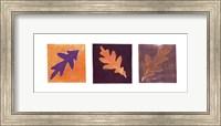 Leaf Impressions/Oak Fine-Art Print