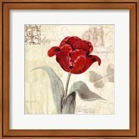 Tulip Gem I Fine-Art Print