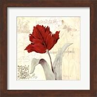 Tulip Gem II Fine-Art Print