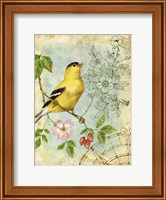 Songbird Sketchbook III Fine-Art Print