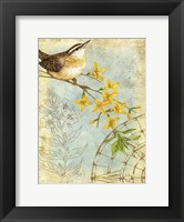 Songbird Sketchbook I Fine-Art Print