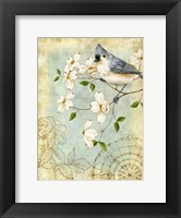 Songbird Sketchbook IV Fine-Art Print