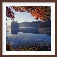 Bass Lake in Autumn I Fine-Art Print