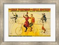 The Miraculous Melrosas Fine-Art Print