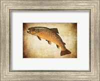 Brown Trout II Fine-Art Print