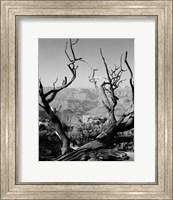 USA, Arizona, Grand Canyon, Colorado River seen from South Rim Fine-Art Print