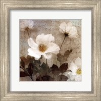 Anemone I Fine-Art Print