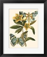 Butterfly Oasis III Fine-Art Print