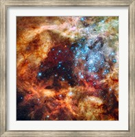 A Hubble Space Telescope image of the R136 Super Star Cluster Fine-Art Print