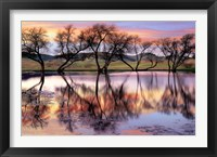 Lake Reflection Fine-Art Print