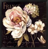 Marche de Fleurs on Black Fine-Art Print