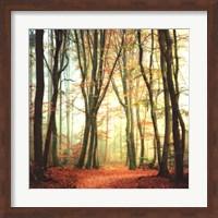 Colorfall II Fine-Art Print