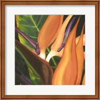 Bird Of Paradise Tile I Fine-Art Print