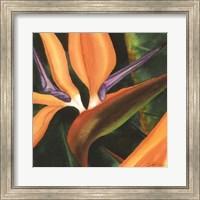 Bird Of Paradise Tile IV Fine-Art Print