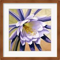 Desert Bloom II Fine-Art Print
